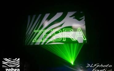foto_zebra6.jpg
