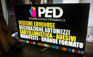 ped-1.jpg
